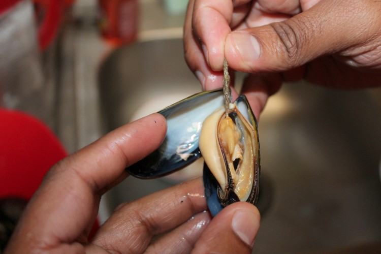 how to clean mussels poop